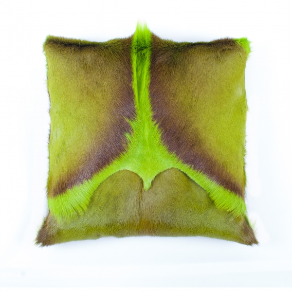 springbok cushion, green
